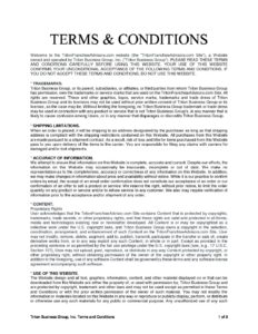 Terms-and-Conditions-pdf-232x300